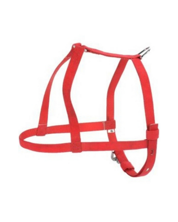 "Kennel Furlon Body Belt | (W = 1/2"") 