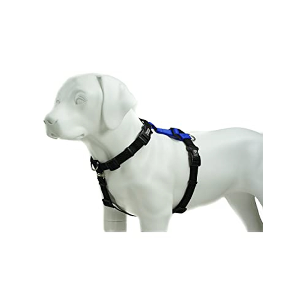 kennel H-Type Body Belt | Dogs | Multiple Sizes |