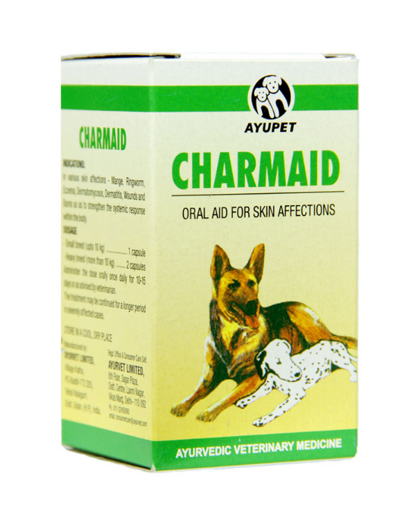 Ayupet Charmaid Oral Aid Tablets | Dogs and Cats | 30 Tablets